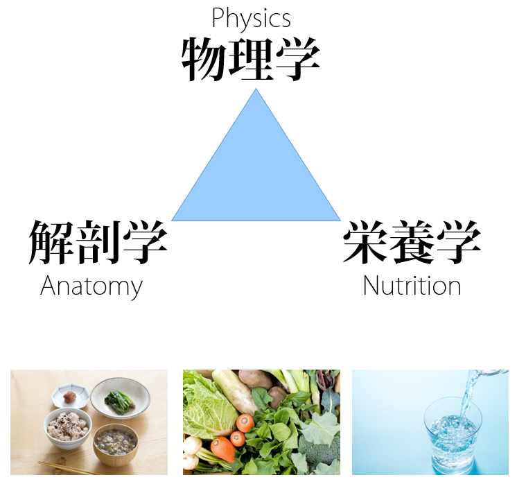 スタジオコアダイエットの理論は物理学・解剖学・栄養学に基づきます